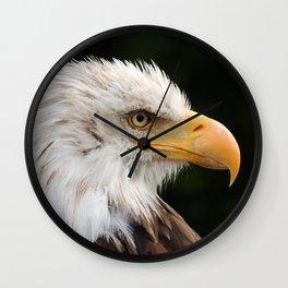 MM - Grinning bald eagle Wall Clock