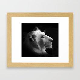 Wild White Lion Portrait Framed Art Print