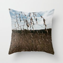 Cottonfield Number 1 Throw Pillow