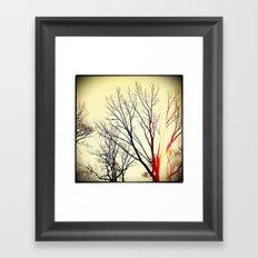 'SPRING SUN' Framed Art Print