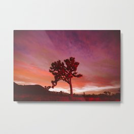 Fuschia Night Sky Metal Print