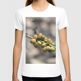 Illustration Coffee Beans T-shirt
