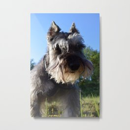 What are you doing?  Metal Print