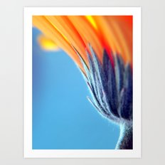 SILKY SMOOTH Art Print