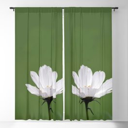White Cosmo Daisy Blackout Curtain