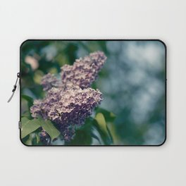 Syringa vulgaris lilac Laptop Sleeve