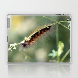 Hang in there Fuzzy Caterpillar 3 Laptop & iPad Skin