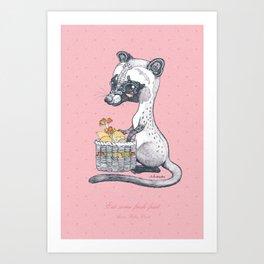 Eat Some Fresh Fruit - Asian Palm Civet - Pink Art Print