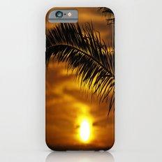 Palm sunset Slim Case iPhone 6s