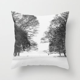 Winter in the Park - Print (RR 271) Throw Pillow