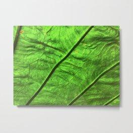 Chlorophyl Landscape Metal Print