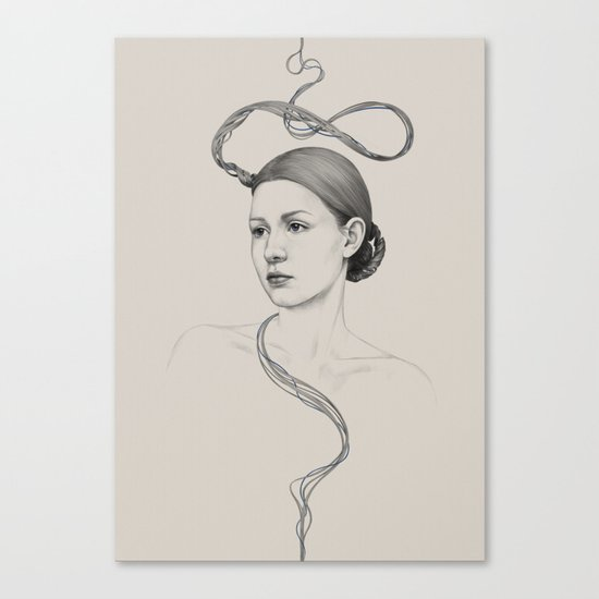 268 Canvas Print