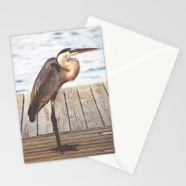Great Blue Heron on Fishing Dock Photography Stationery Cards