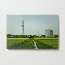 Rice Paddy in Tam Coc Metal Print