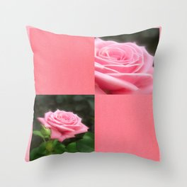 Pink Roses in Anzures 3 Blank Q11F0 Throw Pillow
