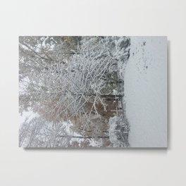 My Yard, In Winter by Sandra Molaen Metal Print