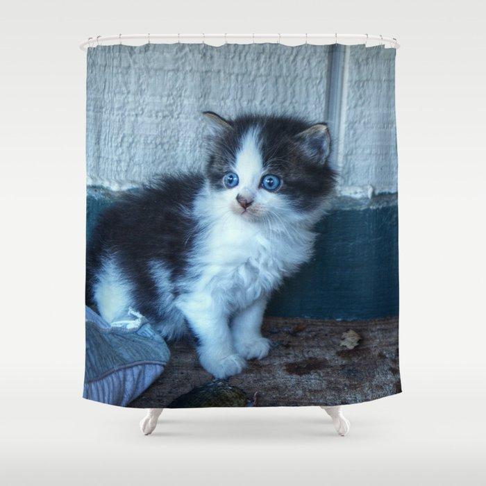 Black White Kitten Shower Curtain By Frankiecat