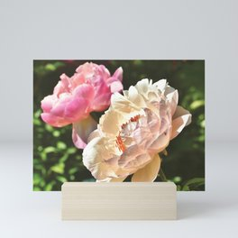 Peony Rose Mini Art Print