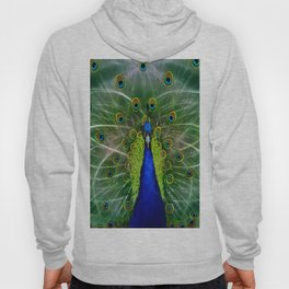Peacock dreamcatcher Hoody