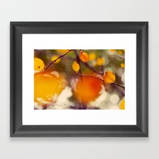 Nutmeg Framed Art Print