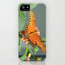 Gulf Fritillary on Lantana iPhone Case