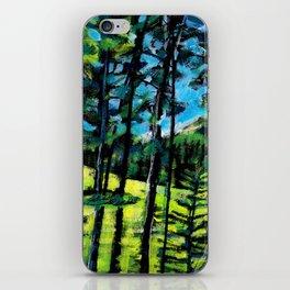Greywolf Golf Course / Dennis Weber / ShreddyStudio iPhone Skin