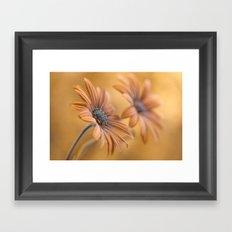 Daisy double Framed Art Print