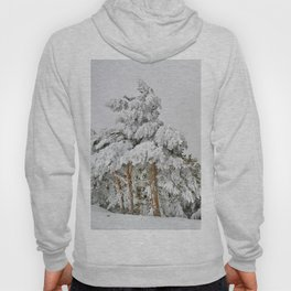 """""""Ghost forest"""". Square.  After the snowstorm Hoody"""