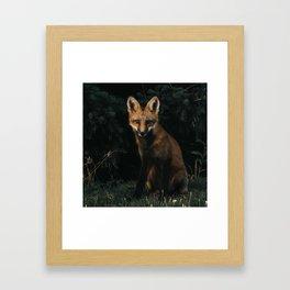 Foxing at me Framed Art Print