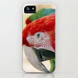Green Winged Macaw Portrait iPhone Case