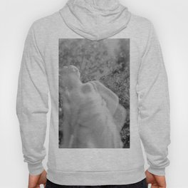 film photograph taken with crown graphic 4x5 camera Hoody