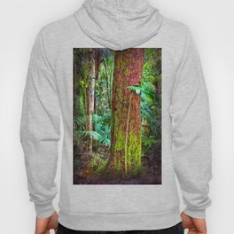New and old rainforest growth Hoody