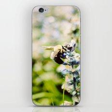 SWEET BEE iPhone & iPod Skin