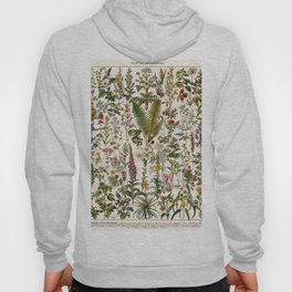 Adolphe Millot - Plantes Medicinales B - French vintage poster Hoody