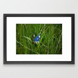 Crane 002 Framed Art Print