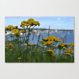 Coastal Vegitation Canvas Print