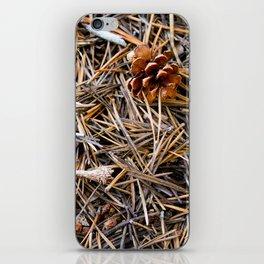 pine needles in yosemite iPhone Skin