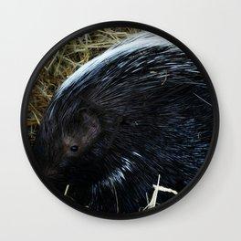 Porcupine Wall Clock
