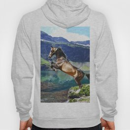 Horse and Lake Hoody