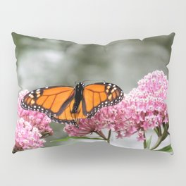 Monarch at Waterford Bend Park 1 Pillow Sham