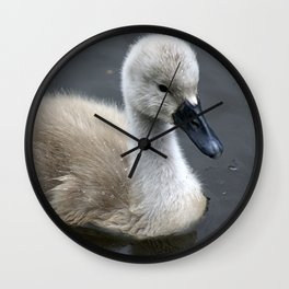 Not Such an Ugly Duckling Wall Clock