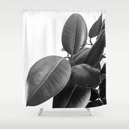 Ficus Elastica #23 #BlackAndWhite #foliage #decor #art #society6 Shower Curtain