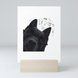 Curious Schipperke Dog Mini Art Print
