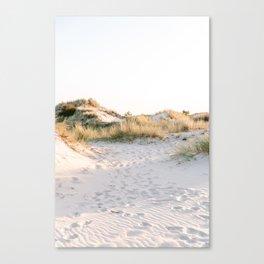 Golden Dunes   Calm Sand Dunes Netherlands Print Canvas Print