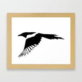 Pica Pica (magpie)  one Galery Giftshop Framed Art Print