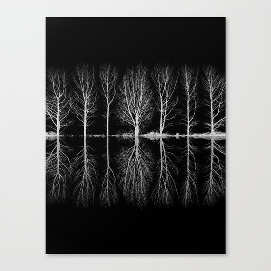 Echo In The Trees Canvas Print