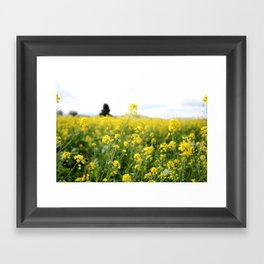 Mustard Field Framed Art Print