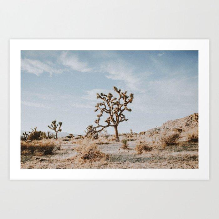 Joshua Tree II / California Desert Kunstdrucke