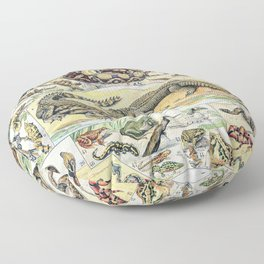 Reptiles by Adolphe Millot // XL 19th Century Snakes Lizards Alligators Science Textbook Artwork Floor Pillow