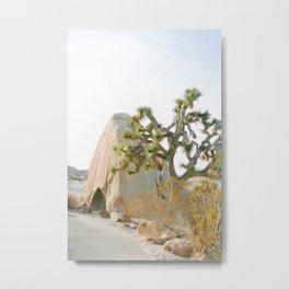 Jumbo Rocks Campground, Joshua Tree Metal Print